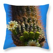 Saguaro Elephant Trunk Throw Pillow
