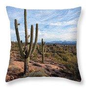 Saguaro Fields Throw Pillow