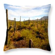 Saguaro National Park Throw Pillow