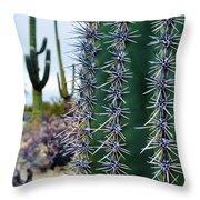 Saguaro National Park Portrait Throw Pillow