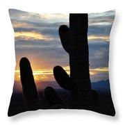 Saguaro National Park Sunset Landscape Throw Pillow