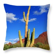 Saguaro Np Throw Pillow