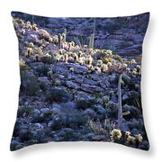 Saguaro Sunrise Throw Pillow