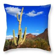 Saguaro Tree Throw Pillow
