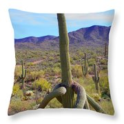 Saguaro With Down Twist Throw Pillow
