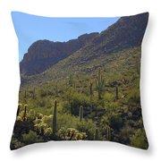 Saguaros And Other Greenery  Throw Pillow