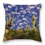 Saguaros Under A Cloud Dappled Sky Throw Pillow
