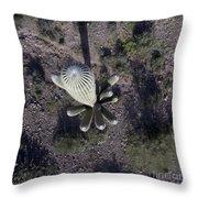 Sagugaro Cactus Throw Pillow