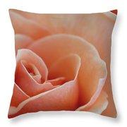 Sahara Light Tan Cream Rose Throw Pillow