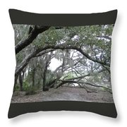Saint Andrews Park Florida Throw Pillow