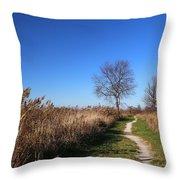 Saint Johns Marsh In Fall 3 Throw Pillow
