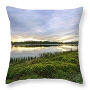 Saint Lucie Nature  Throw Pillow