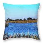 Saint Marks National Wildlife Refuge Lagoon Throw Pillow