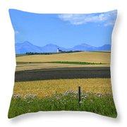 Saint Henry's Panorama Throw Pillow