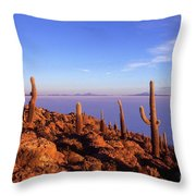 Salar De Uyuni And Cacti At Sunrise Throw Pillow