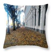 Autumn In Salem Throw Pillow