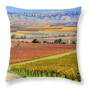 Salinas Valley Throw Pillow