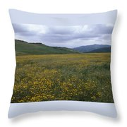 Salisbury Potrero - Sierra Madre Mountains Throw Pillow