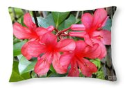 Salmon Pink In The Tropics Throw Pillow