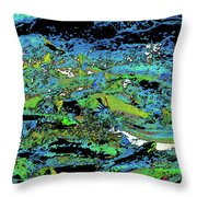 Salmon Run 7 Throw Pillow