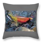 Salmon Spawning Throw Pillow