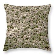 Salmonella Biofilm Throw Pillow