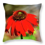 Salsa Red Coneflower Throw Pillow