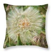 Salsify Seed Head Throw Pillow