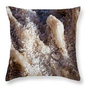 Salt Crystals Throw Pillow