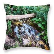 Mill Creek Canyon - Utah Throw Pillow