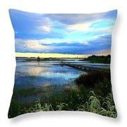 Salt Marsh Throw Pillow