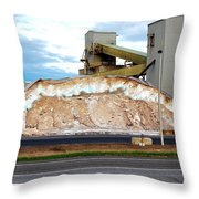 Salt Mine Throw Pillow