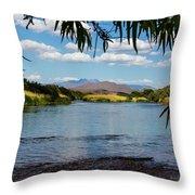 Salt River Arizona Throw Pillow