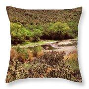 Salt River Serenity Throw Pillow