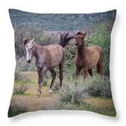 Salt River Wild Horses-img_747217 Throw Pillow