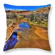Salt Wash Near Wolf Ranch Arches Np Moab Utah Throw Pillow