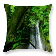 Salto Do Prego Waterfall Throw Pillow
