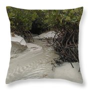 Saltwater Creek Throw Pillow
