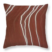 Saltwater Trails #2 Throw Pillow