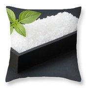 Salty Basil Throw Pillow