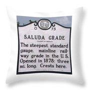 Saluda Grade Throw Pillow