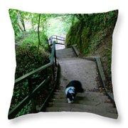 Salvesen Steps North Throw Pillow