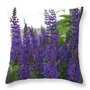 Salvia In The Spring Throw Pillow