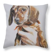 Sambo Throw Pillow