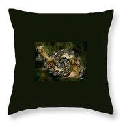 Sammy Snail Throw Pillow by Julie Grace