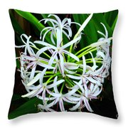 Samoan Spider Lily Throw Pillow