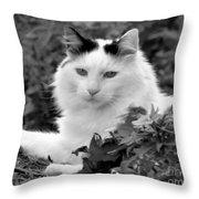 Sampson In Black And White Throw Pillow
