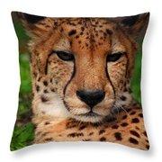 Samson Throw Pillow