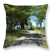 San Bernardino Mountains - Southern California 4 Throw Pillow