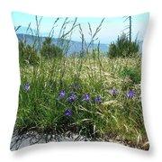 San Bernardino Mountains - Southern California 5 Throw Pillow